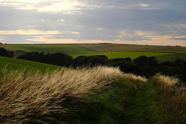 The Rural Soundscape Of The Countryside And How To Characterize It
